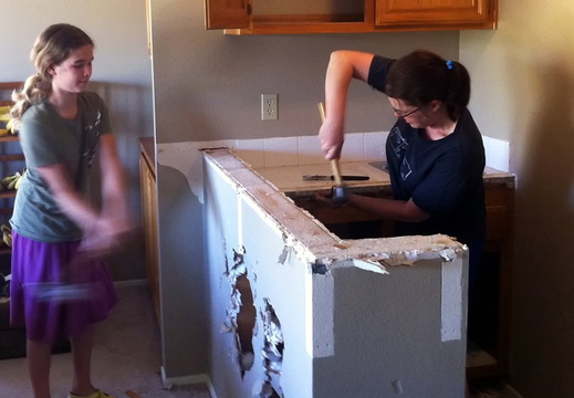 project wet bar destruction